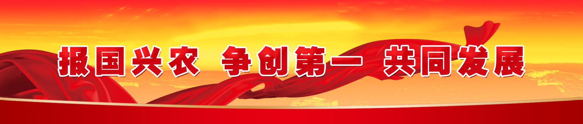 申博sunbet官网