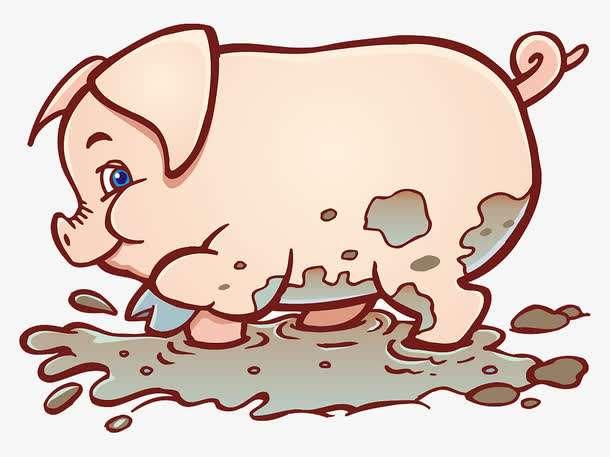 """农信""""猪""""挑战,精品大奖等你拿!"""
