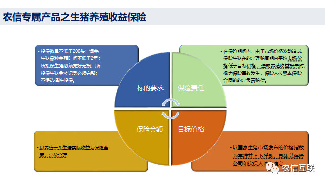 http://filesouthcdn.nxin.com/cms_image_bb0ab427-d00c-4d7a-9392-6a2f8f2d8b66.jpg