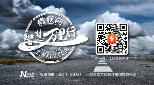 http://filesouthcdn.nxin.com/cms_image_ee653a3e-aba6-440c-8e85-bb3bbec02616.png
