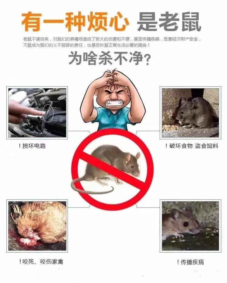 https://filesouthcdn.nxin.com/nxsc_155499627799504613574925855617.JPEG